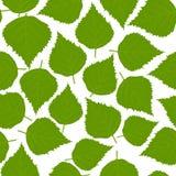 Modèle de feuilles illustration stock