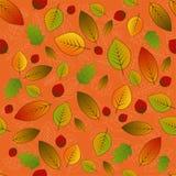 Modèle de feuilles Images libres de droits