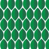 Modèle de feuilles Image stock