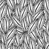 Modèle de feuilles Image libre de droits