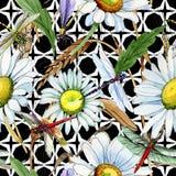 Modèle de fleur de camomille de Wildflower dans un style d'aquarelle Images libres de droits