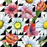 Modèle de fleur de camomille de Wildflower dans un style d'aquarelle Photo libre de droits