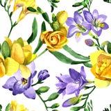 Modèle de fleur de fresia de Wildflower dans un style d'aquarelle Photographie stock
