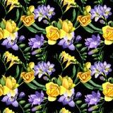 Modèle de fleur de fresia de Wildflower dans un style d'aquarelle Photo libre de droits