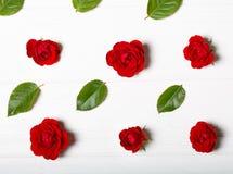 Modèle de fleur fait à partir des roses rouges et des feuilles Table en bois blanche Images stock