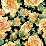 Modèle de fleur jaune de roses de thé-hybride de Wildflower dans un style d'aquarelle Photos libres de droits