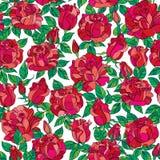 Modèle de fleur rose sans couture de vecteur illustration libre de droits