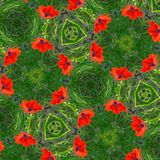 Modèle de fleur sans couture Photographie stock libre de droits