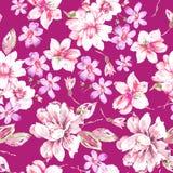 Modèle de fleur sans couture d'aquarelle SUR LE ROSE image libre de droits