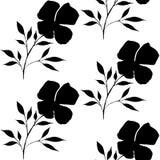 Modèle de fleur sans couture d'aquarelle de vintage Bannière blanche noire de fond de vecteur Image libre de droits