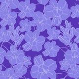 Modèle de fleur sans couture violet-clair Texture sans joint de vecteur Photos stock