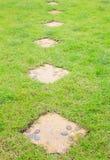 Modèle de fleur sur le chemin en pierre dans l'herbe verte Images libres de droits