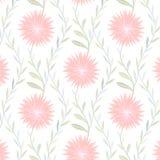 Modèle de fleur tendre sur le fond blanc illustration stock