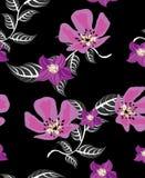 Modèle de fleurs Photo stock