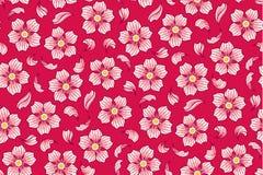 Modèle de fleurs de cerise Image libre de droits