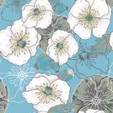 Modèle de fleurs de pavot bleu Photos libres de droits