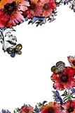 Modèle de fleurs de pavot de conception florale avec l'espace pour le texte Photo libre de droits
