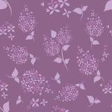 Modèle de fleurs lilas sans couture sur le fond pourpre Photographie stock