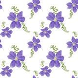 Modèle de fleurs de ressort de clématite illustration stock
