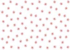 Modèle de fleurs rose sur le fond blanc   Conception de papier peint de ressort de fleur Photos stock
