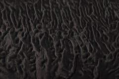 Modèle de fourrure de moutons noirs Images libres de droits