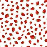 Modèle de fraise de Seamles sur le fond blanc Photo libre de droits