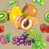 Modèle de fruit Image libre de droits