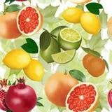 Modèle de fruit sur le fond des feuilles vertes illustration libre de droits