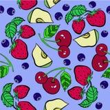 Modèle de fruits et de baies Photos stock