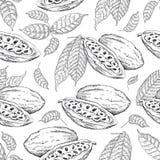 Modèle de graines de cacao Image stock