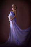 Modèle de grossesse Photographie stock libre de droits