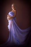 Modèle de grossesse Image stock