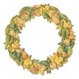 Modèle de guirlande d'aquarelle avec les feuilles d'automne colorées Photo stock