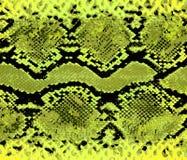 Modèle de jaune de peau de serpent Serpent de texture Copie ? la mode Mode et fond ?l?gant illustration stock