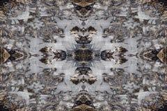 Modèle de kaléidoscope de glace d'hiver Photographie stock