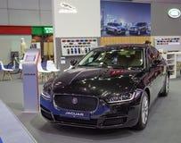 Modèle de la berline XE de Jaguar photos libres de droits