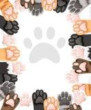 Modèle de la collection différente d'icône de pattes de chat de couleur Ensemble mignon de pied de chat Concept pour le design illustration libre de droits
