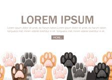 Modèle de la collection différente d'icône de pattes de chat de couleur Ensemble mignon de pied de chat Concept pour le design illustration stock