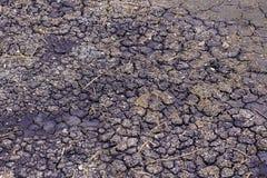 Modèle de la surface au sol de boue fendue La surface a créé beaucoup de modèles criqués de boue de rétrécissement après qu'il se Image libre de droits