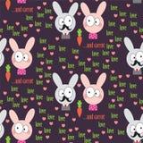 Modèle de lapin Photographie stock