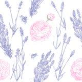 Modèle de lavande et de roses illustration stock