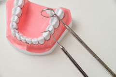 Modèle de mâchoire et trousse d'outils dentaire Photos libres de droits