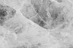 Modèle de marbre abstrait extérieur de plan rapproché au fond en pierre de marbre de texture de plancher dans le ton noir et blan Photos stock