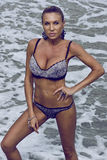 Modèle de mode de bikini photographie stock libre de droits