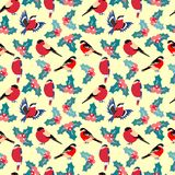 Modèle de Noël avec les baies houx de feuilles et le bouvreuil d'oiseaux illustration stock
