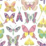Modèle de papillon de vecteur illustration libre de droits