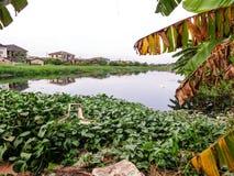 Modèle de paysage de l'eau photographie stock libre de droits