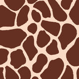 Modèle de peau de girafe Image stock