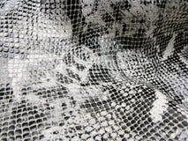 Modèle de peau de serpent de fond Photographie stock
