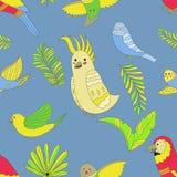 Modèle de perroquets illustration stock